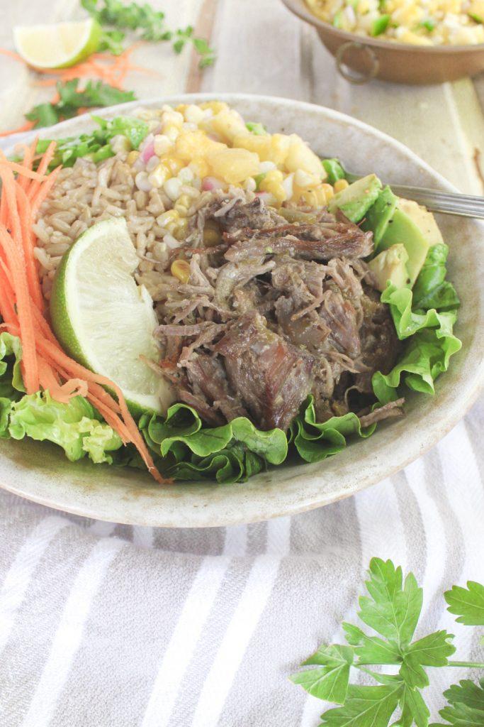 carnitas and salsa in bowl