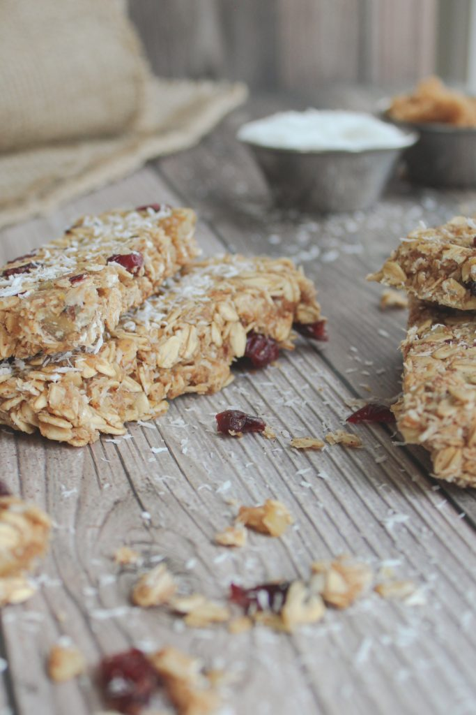 granola bars with coconut and swerve